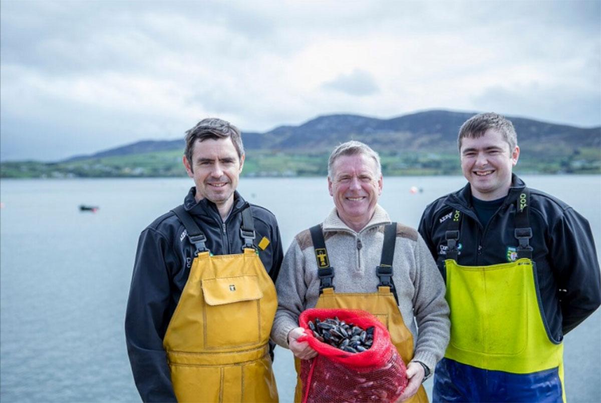 Mulroy Bay Mussels